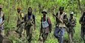 Tuerie de Casamance, 16 suspects déférés