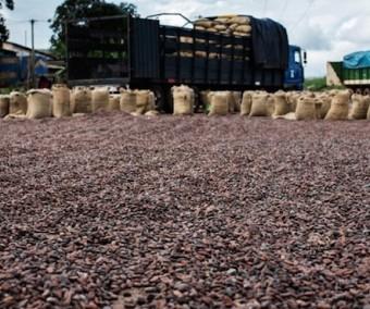 Une étude fournit des données sur l'occupation des sols