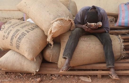 Mauvaise gestion de la filière cacao selon l'audit du KPMG