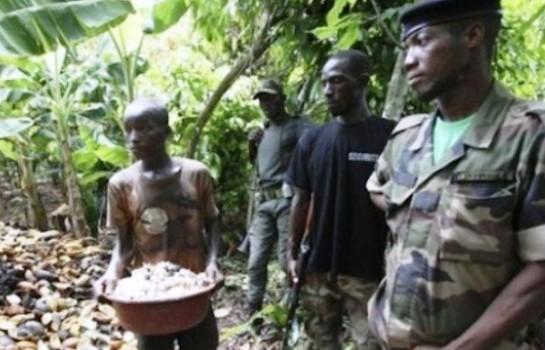 Des ressortissants burkinabè dans des forêts classées ivoiriennes