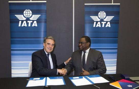 IATA- AFRAA : Main dans la main pour le développement des transports aériens en Afrique