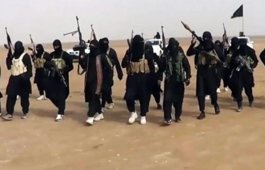 Réinsertion en cours de 150 ex-combattants de Boko Haram