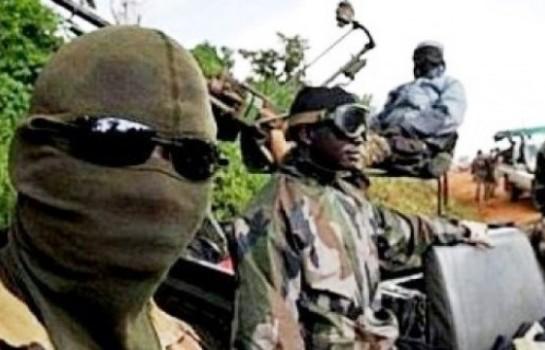 Attentat terroriste à Diffa