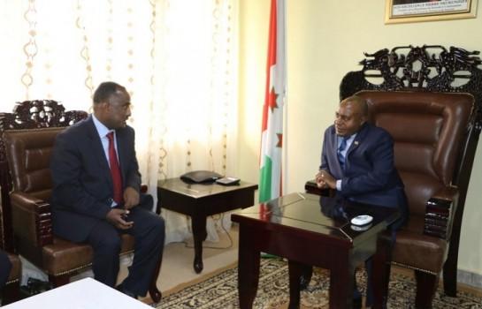 Directeur général de Ethiopian Airlines