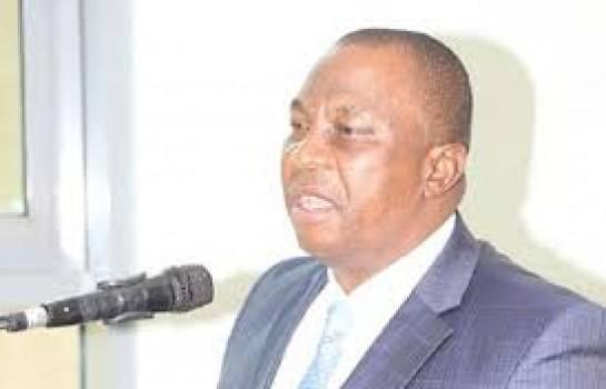Kobenan Kouassi Adjoumani, cadre du RHDP