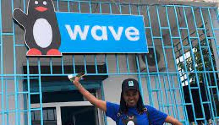 E-commerce: Wave, le vrai visage de la la start-up qui vaut 954 milliards FCFA