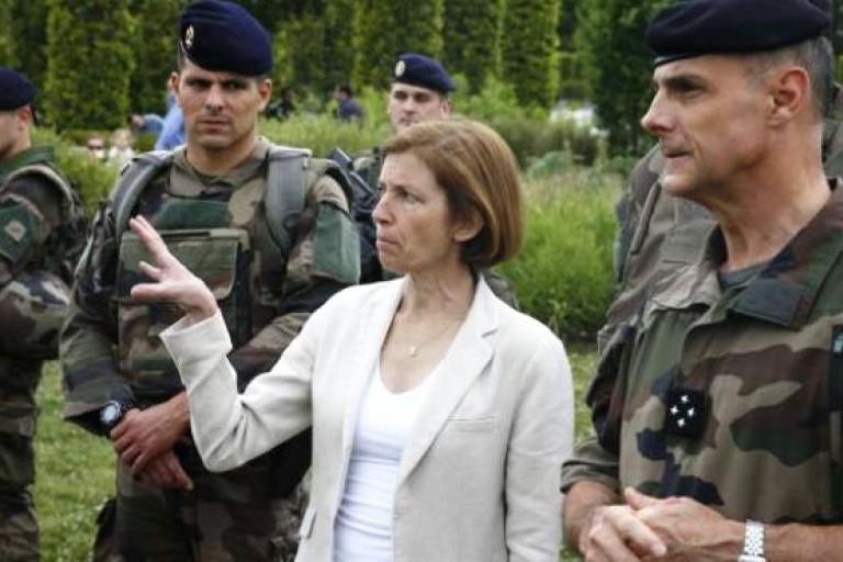 La ministre Françoise Parly donne un coup de main au G5 Sahel