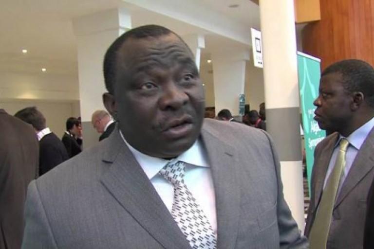 Kobenan Kouassi Adjoumani se sent-il menacé par Kablan Duncan ?