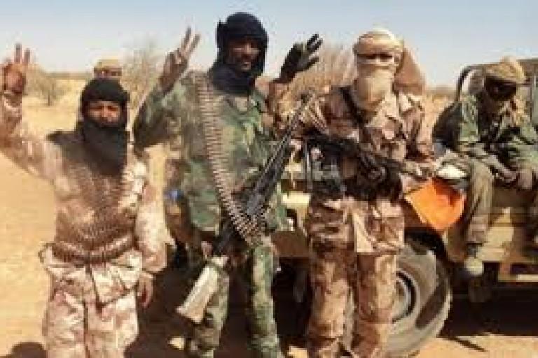 Un chef terroriste tué au Mali