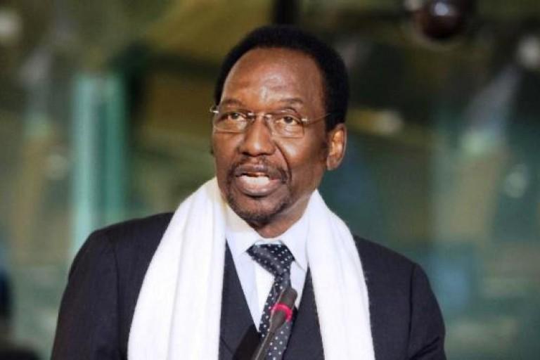 Dioncounda Traoré, représentant de la mission d'observation des élections de l'Union africaine en RDC