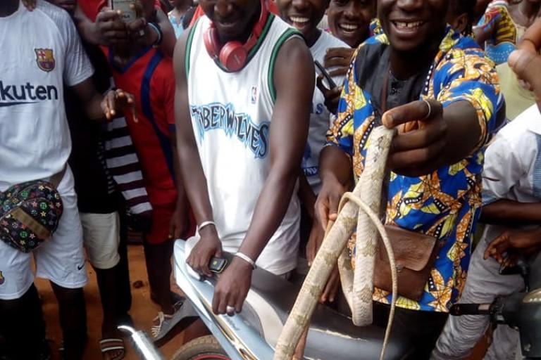 Un serpent s'invite à la proclamation des résultats du BEPC à Facobly