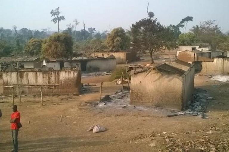 Une vue de la destruction d'un campement installé dans une forêt classée