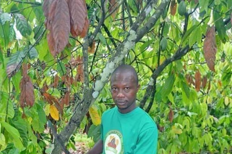Café-cacao : Le représentant des enfants des planteurs de CI (UNEPCCI) demande au gouvernement plus d'actions concrètes à l'égard du monde agricole.