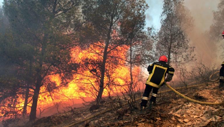 Tunisie : un incendie fait ravage depuis trois jours