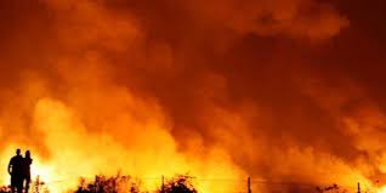 Des incendies ravagent le nord de l' Algérie, au moins 40 personnes tuées